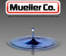 Mueller Water Products, Inc  (NYSE:MWA) Net Sales Decline In